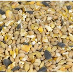 Mix Granaglie kg 25