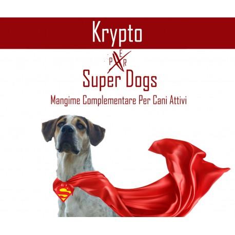 KRYPTO SUPER DOG