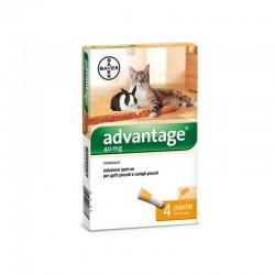 Advantage s.o. 40 Gatto/Coniglio