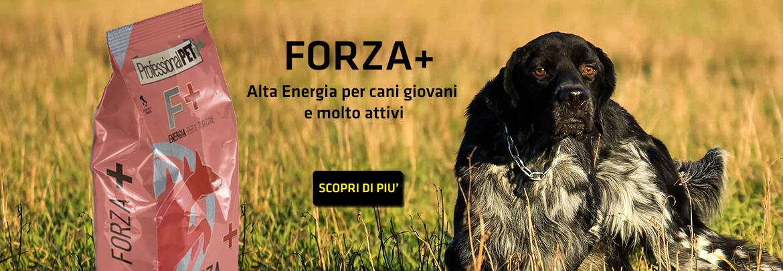 Professional Pet Forza + Alta Energia per Cani Giovani o Molto Attivi